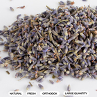 Wholesale Herbal Tea Dried Lavender with Good Smell