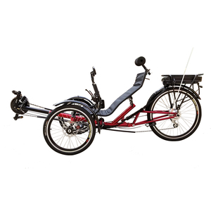 Free Shipping and Import Duty 2019 Hot Selling 3 Wheel 250W Electric Pedal  Assist Recumbent Trikes for Adults Elderly