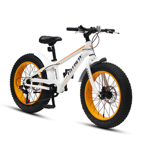 snow fat tyre bicycle beach bike for men