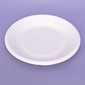 Household Items Sugarcane Bagasse  Plate  Biodegradable 7 Inch