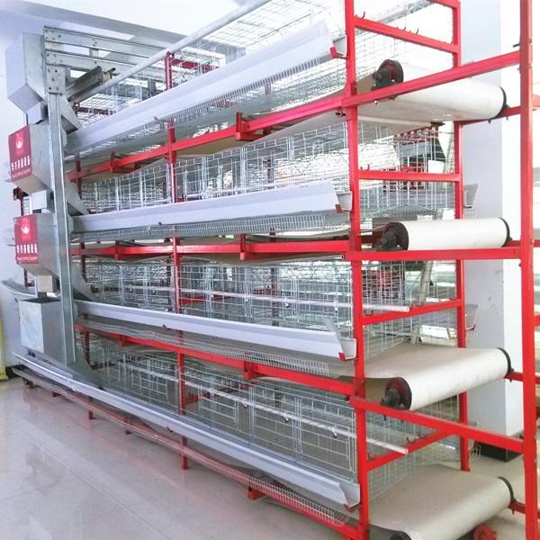Chicken Breeding Machine /chicken Poultry Breeding Houses