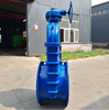 /product-detail/non-rising-stem-soft-seal-gate-valve-fire-pipeline-gate-62079125019.html