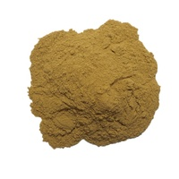 High Quality Natural White Tea Extract Powder