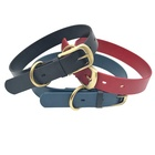 Waterproof TPU Coated Nylon Printing Leather Dog Collar with Logo