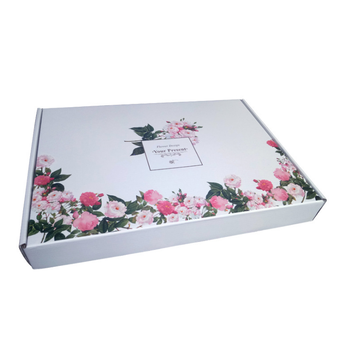 Free Sample Special Colorful Rectangular Underwear Fruit Hard Plane Box,folding Custom Paper Box Package