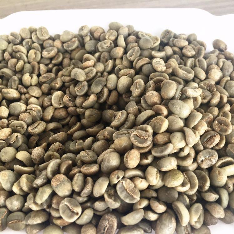 Green Aa Above Screen 18 Arabica Green Coffee Bean Buy Arabica