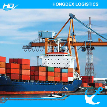 Professional freight forwarding sea freight china to uk