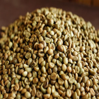 VIETNAM ROBUSTA GREEN BEANS BEST QUALITY BEST PRICE SMALL MOQ