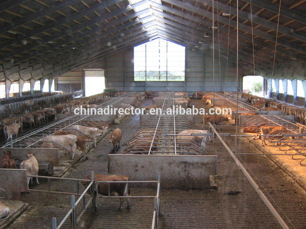 Design of a pig house modern design for Low cost farm house