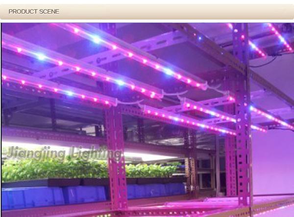 Top Quality 48'' Aeroponics Vertical Farm Led Grow Light For ...