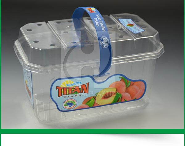 Popular Promotional Custom Disposable Plastic Storage Container Packing Box With Lid