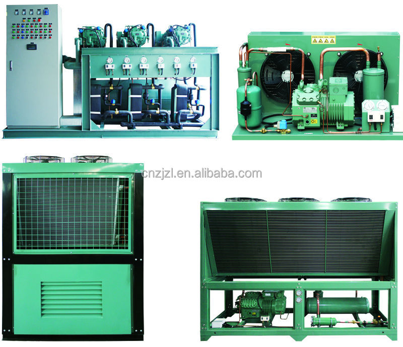Bitzer Condensing Unit, Single Stage Or 2 Stage, Air Cooled Or Water Cooled, For Sale By Factory Directly
