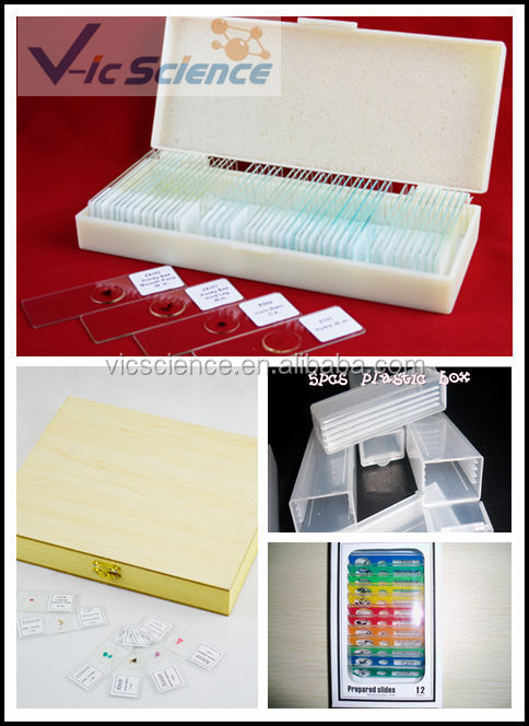 Medical Prepared Microscope Mycology Slide Set Kits For Teaching ...