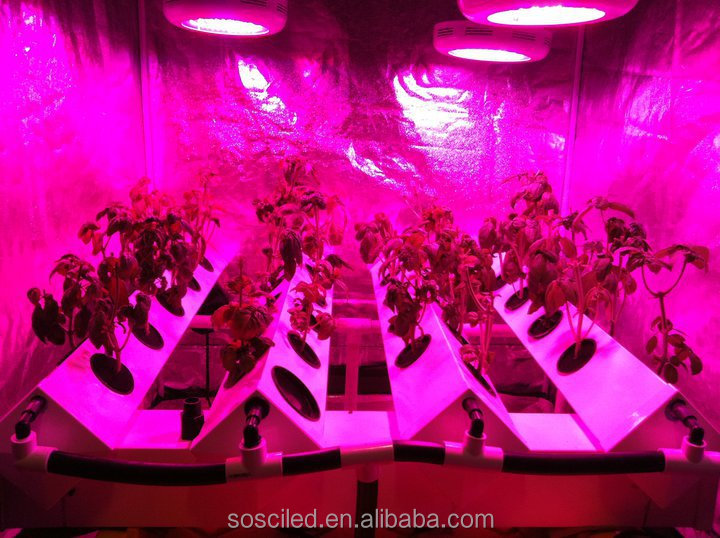 Apollo Horticulture Led Grow Lighting 120w Led Grow Light