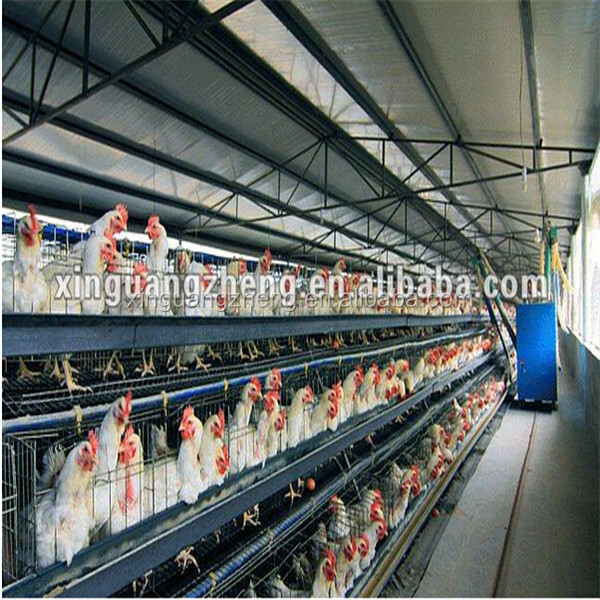 modern design prefab chicken layer cage