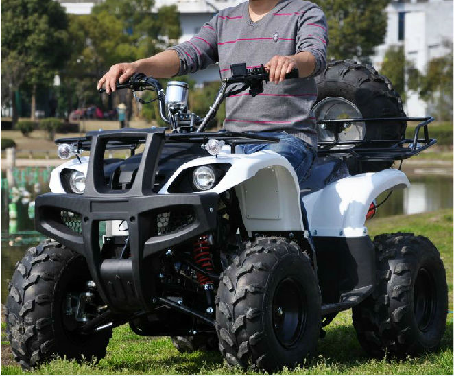 Manual Transmission Type And Eec Certification 250cc Atv Manual Guide