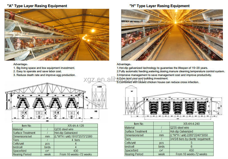 High Quality Steel Poultry Equipment Chicken Farm House From China