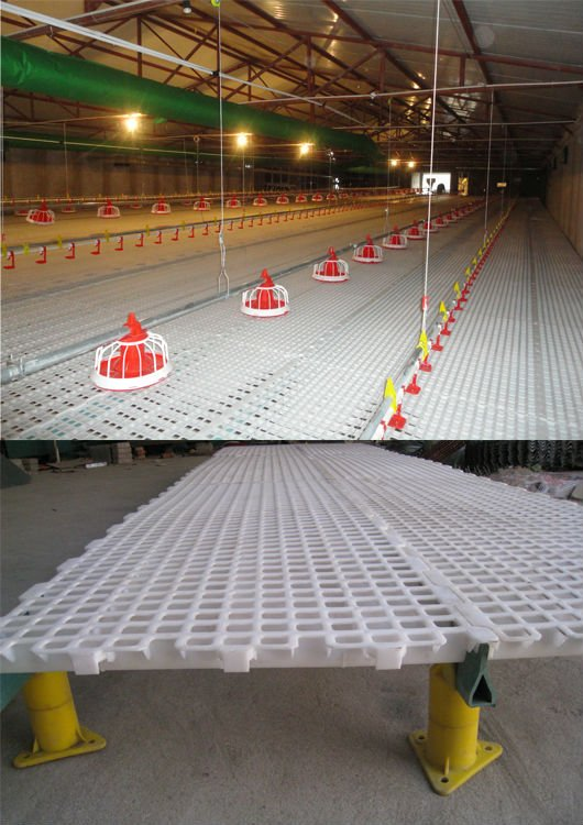 Poultry Farm Plastic Holder Bed Slats Buy Plastic Holder