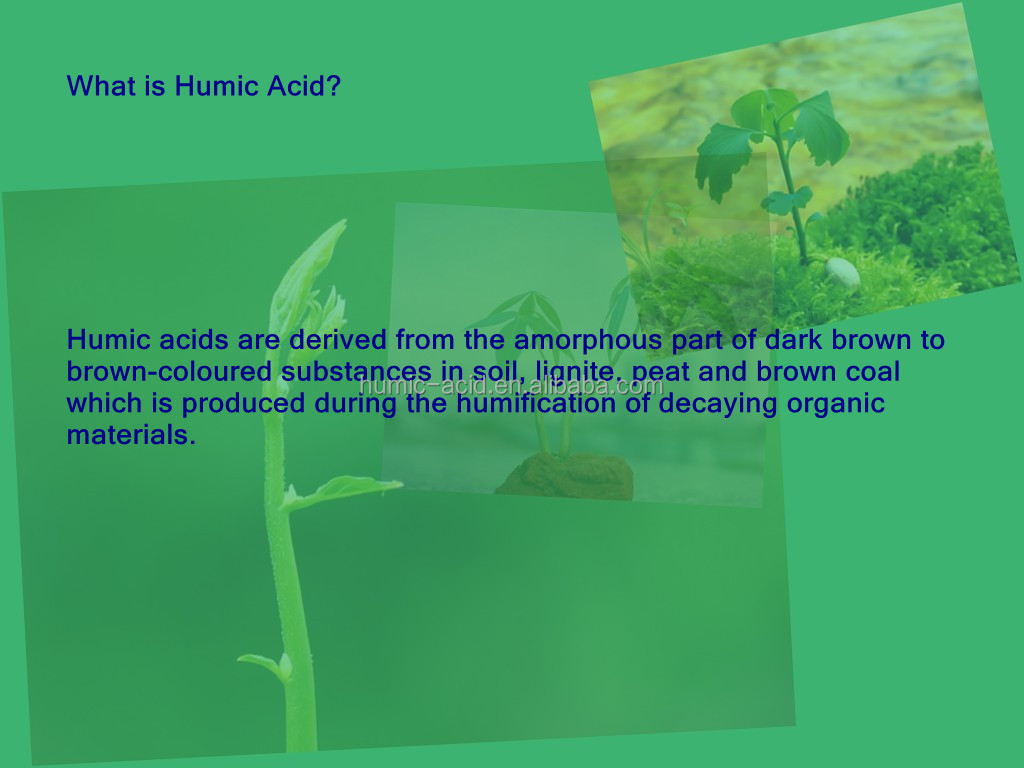water soluble Agriculture organic fertilizer 60% sodium humate