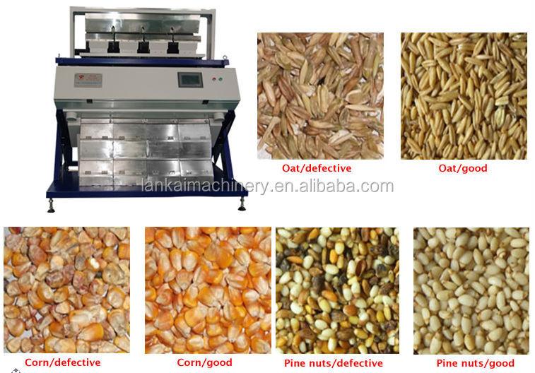 kontrak forex untuk perbedaan sinyal perdagangan gandum