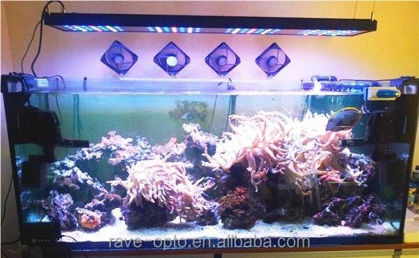 Nano Size 80w Programmable Led Aquarium Light With Sunrise Mode ...