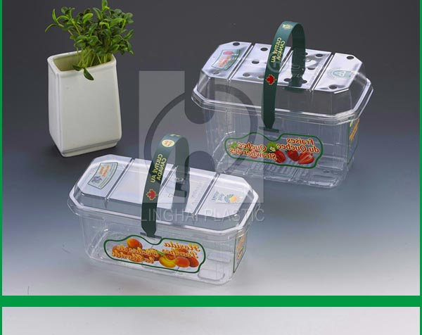 Manufacturer Wholesaler PET Clear Plastic Fruit Container Box Plastic Fruit Clamshell Punnet