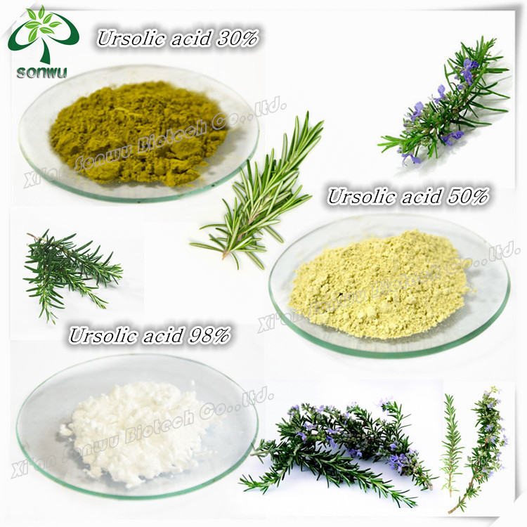 Rosemary Extract Rosmarinic Acid Carnosic Acid Ursolic Acid