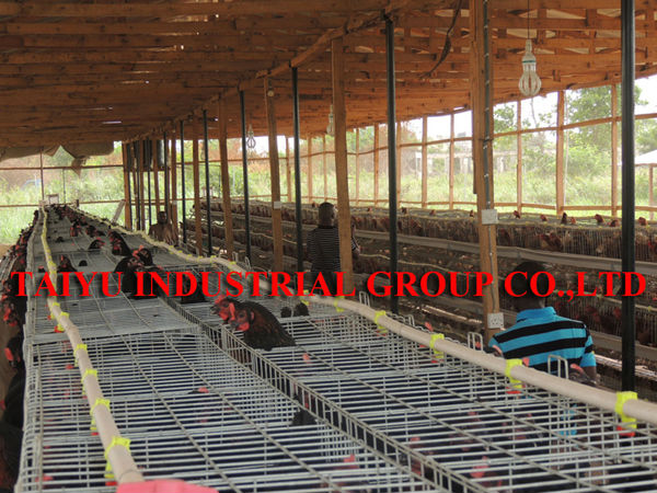 Chicken House Farm taiyu factory design kenya poultry farm house chicken cages - buy