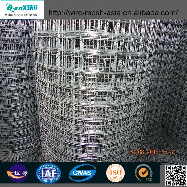 Steel Matting / Welded Wire Mesh Hot Sale Made In China