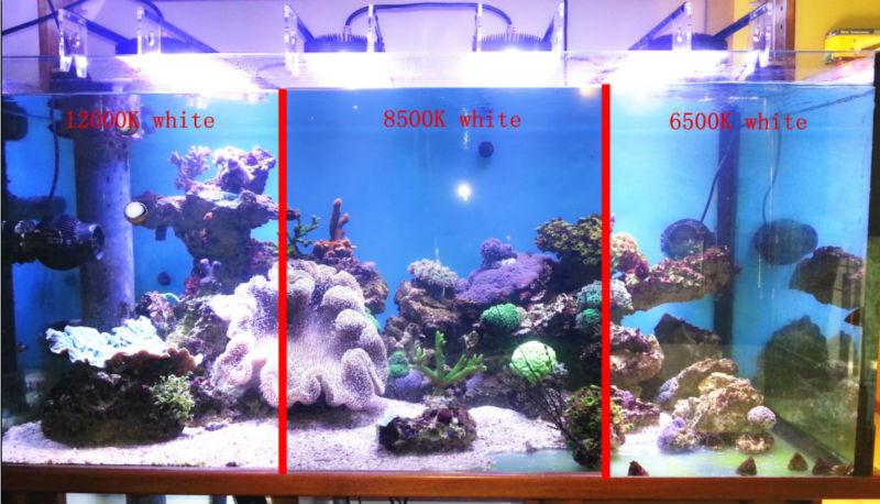 Dsuny 24 Inch Dimmable Full Spectrum Aquarium Led Light