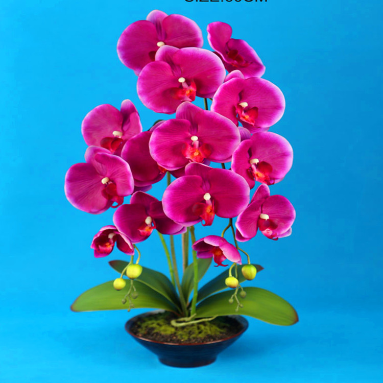large size potted artificial orchid flower with real touch big, Beautiful flower