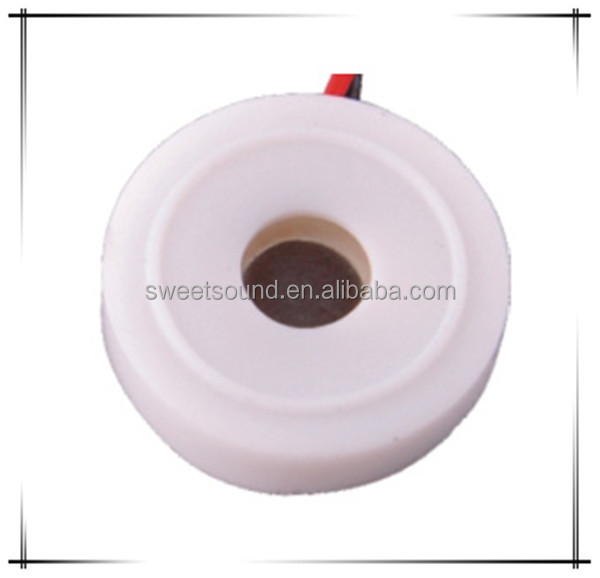 Piezoelectric Ceramic Is Used Widely For Ultrasonic