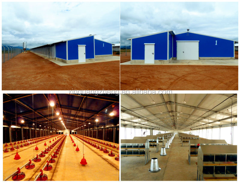 Professional design steel structure and manufacture warehouse and workshop