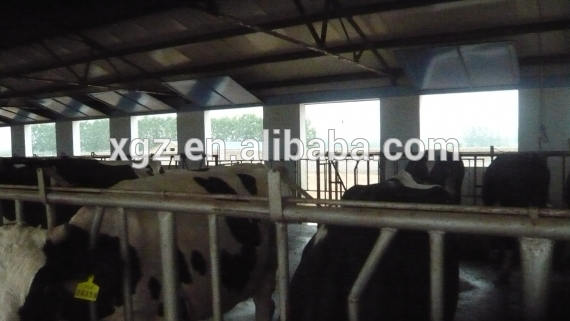 prefab low cost cattle house