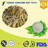 Best quality of Sargassum fusiforme P.E. powder 20% Polysaccharides