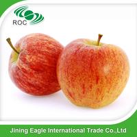 Best Price china fresh bulk red fuji apple exporter in china