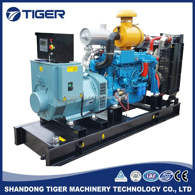 250kw good price durable liquid cooled diesel generator