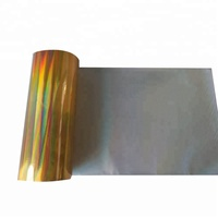 Silver Color Glitter Wood Grain Gold Foil 2D Heat Vacuum Transfer Printing Film