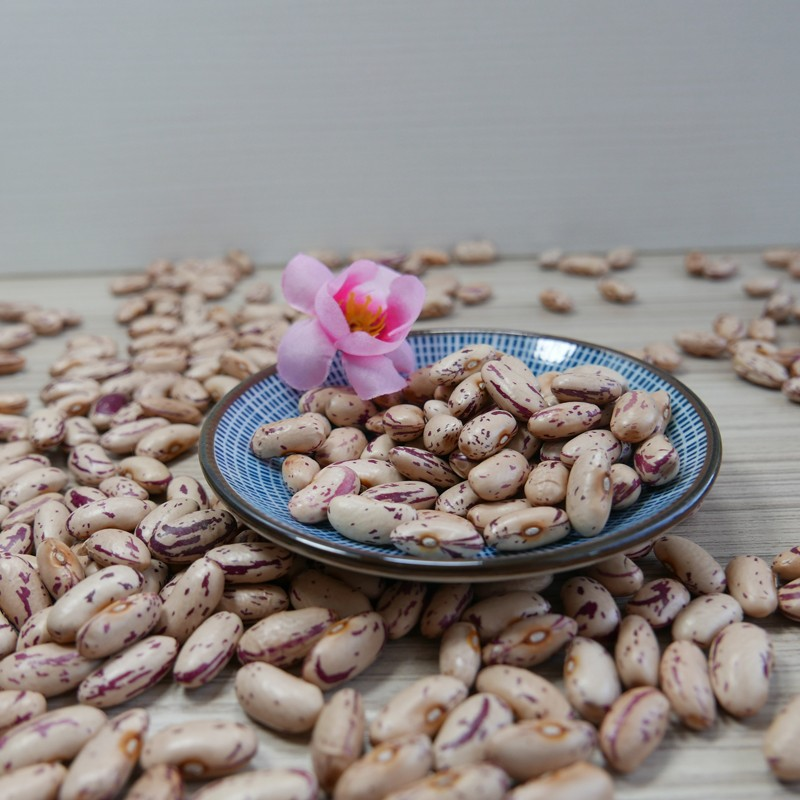 Best selling light speckled kidney bean sugar beans for food cooking