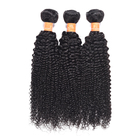 Beauty products afro kinky curly 100% indian human hair wigs, indian long hair braid, indian remy gray hair