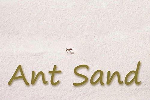 Ant Farm Refill Ant Sand: White: 2 1-Pound Bags
