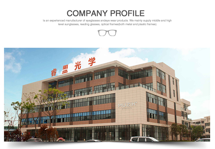 P3899 Promotion Popular Cat Eye Fashionable Laminate Acetate Optical Eyeglasses Frames