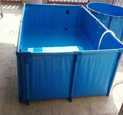 Flexible fish tanks for fish farm house various fishies for Fish farm tanks