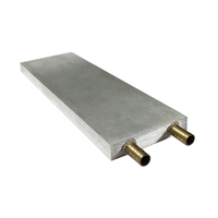 80x250mm Peltier Heatsink Aluminum Liquid Cooling Block