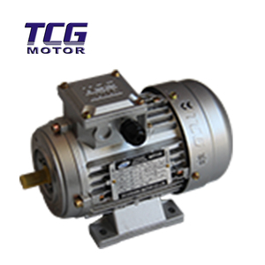 TCG Variable Frequency Drive AC Induction Motor