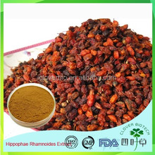 Sea Buckthorn extract powder,Fructus Hippophae P.E.