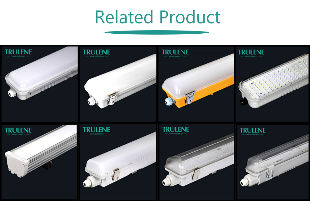 IP65 IP54 T8 waterproof dustproof explosion proof led tri-proof fluorescent light fixture