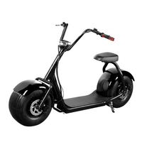 Freefeet China Cheap Li-Ion Battery Fat Tire Off Road Stand Up 2 Wheel Electric Scooter, Electric Motorcycle For Sale