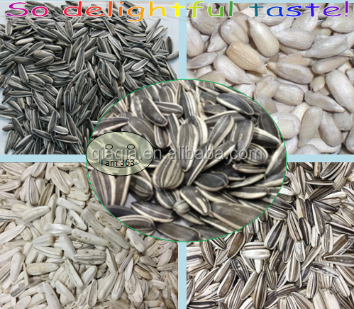 Sunflower Seeds for Indian and southeast asian market