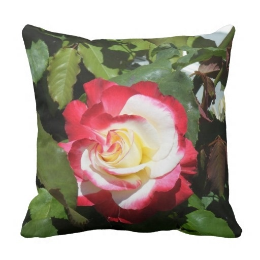 Sunny Pillow Case W Red Tipped Gorgeous Balboa Island Rose (Size: 20